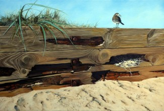Wagtail on Mudeford Breakers. 71cm x 54cm. Oil [This subject developed from the attractive rotting of the Mudeford Breakers presenting a possible nest site for the pied wagtails that frequent this area]