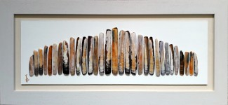 "Tides Bounty 1,  plain white frame of 5.5cms width, dimensions  36""x16"".  Each shell is an artwork within itself"