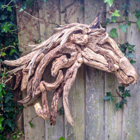 WOOD 'N' HORSE & GUESTS